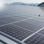 Apesar da crise do coronavírus, a Enel assegura planos de expansão da empresa com projetos de energia limpa para 2020