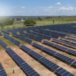 Pesquisa do Global Solar Council mostra forte impacto da pandemia de coronavírus no mercado mundial de energia fotovoltaica