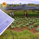 Demanda por energia solar tem forte alta no campo
