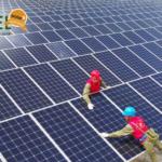 Solar é a única fonte a apresentar aumento de geração no Brasil pelo segundo mês consecutivo, diz CCEE